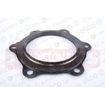Ariston Flange Gasket (6 stud) 924002 (500L STD/STI UK & Protech)