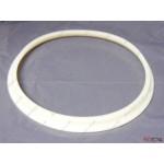 Ariston Cylinder Flange (stainless steel) 570440 (Genus 27 BFFI UK)