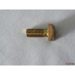 Ariston Screw (M8x20) 918064 (ST 50/80/100 Protech)